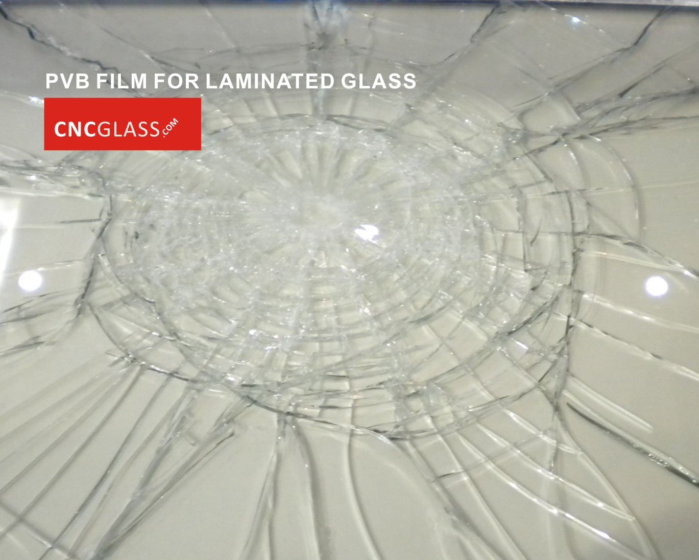 01 PVB FILM for safety laminated glass (2)